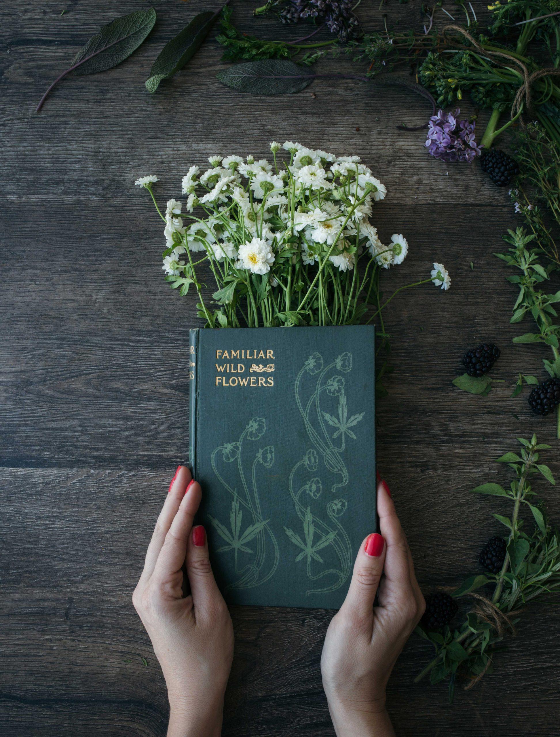 Personne tenant un livre sur les plantes médicinales