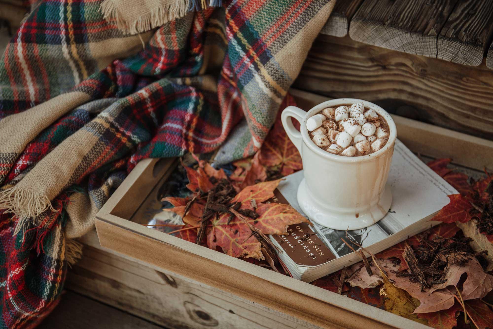 Tasse de chocolat chaud avec couverture et livre
